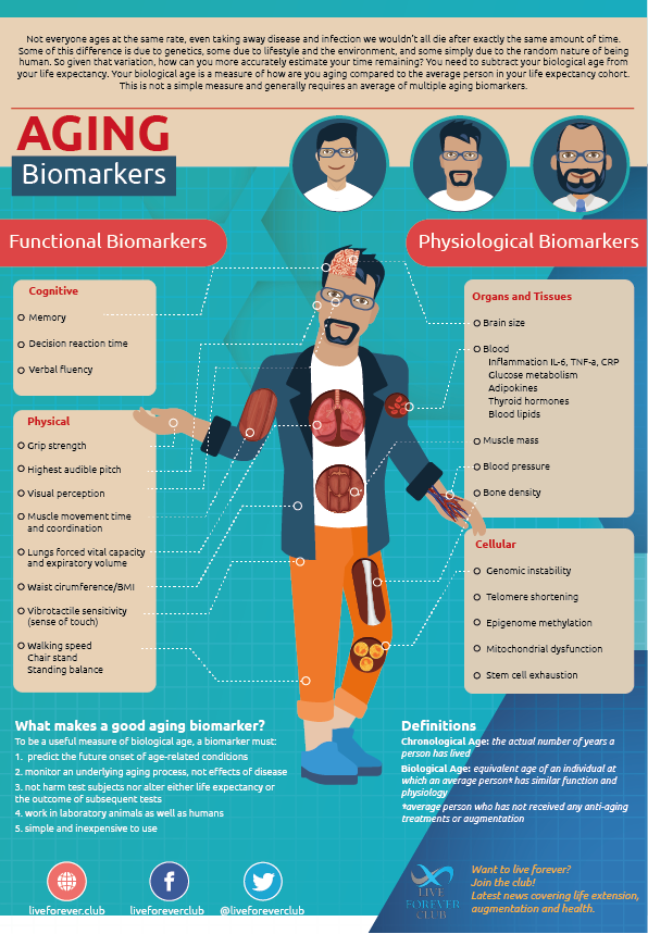 Aging Biomarkers Infographic